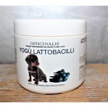 Yogu probiotica & prebiotica