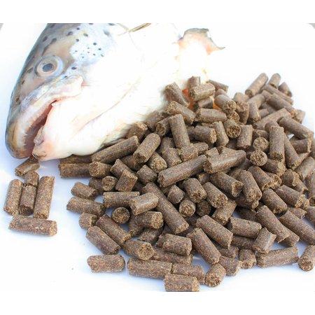 Ozzlesdogfood  Huismerk koud geperste brok met 40% zalm en zalmolie