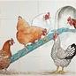 Dieren - Tieren - animals RH24-19, Chicken