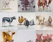 Dieren - Tieren - animals