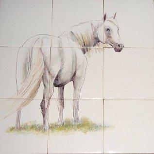 Dieren - Tieren - animals RH18-R horses