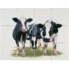 Dieren - Tieren - animals RH12-17 Kühe
