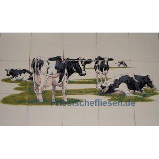 Dieren - Tieren - animals RH15-1