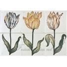 Bloemen - Blume - flowers RH2-9 Tulpen