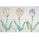 Bloemen - Blume - flowers RM2-7 Tulpen