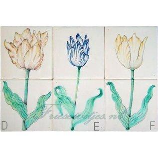 Bloemen - Blume - flowers RM2-7 Tulips