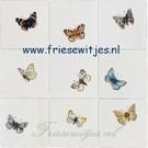 Dieren - Tieren - animals RH1-1k, Schmetterlinge