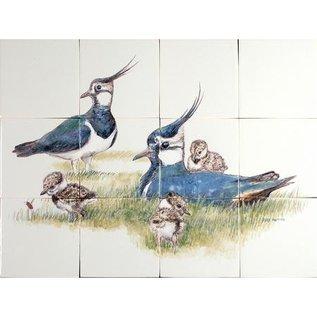 Dieren - Tieren - animals RH12-56 Lapwing