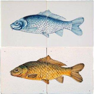 Dieren - Tieren - animals RH2-15-a, fish