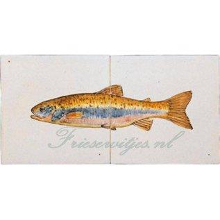 Dieren - Tieren - animals RH2-15c Forelle