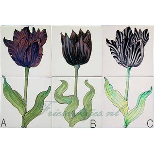 Bloemen - Blume - flowers RH2-10 Tulips