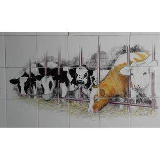 Dieren - Tieren - animals RH15-Kühe im Kuhstall