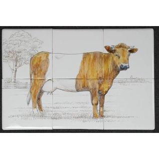 Dieren - Tieren - animals RH6-25, Lakenvelder