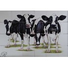Dieren - Tieren - animals RH24R, Cows