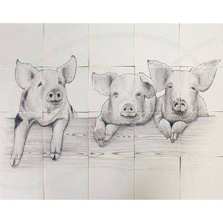 Dieren - Tieren - animals RH20-6, three piglets