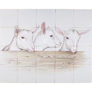 Dieren - Tieren - animals RH20-8, 3 Ziegen