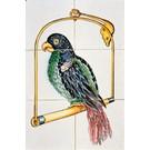 Dieren - Tieren - animals RM6-1, Papagei