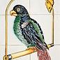 Dieren - Tieren - animals RM6-1, Papegaai