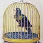 Dieren - Tieren - animals RM20-1 Parrot