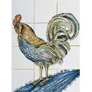Dieren - Tieren - animals RM12-1, Hahn