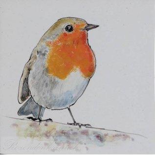 Dieren - Tieren - animals RH1-Robin