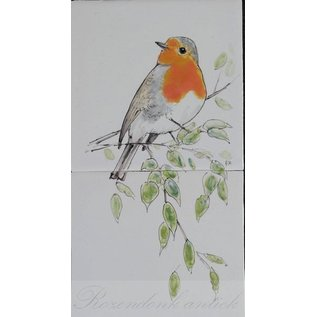 Dieren - Tieren - animals RH2-Robin