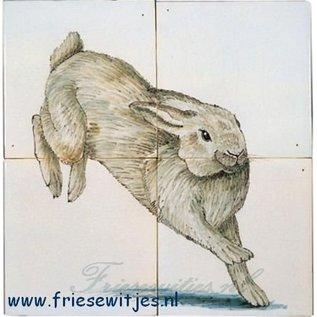 Dieren - Tieren - animals RH4-9, Kaninchen
