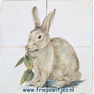 Dieren - Tieren - animals RH4-9, rabbit