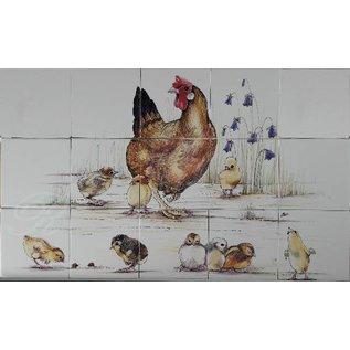 Dieren - Tieren - animals RH9-6, Hen