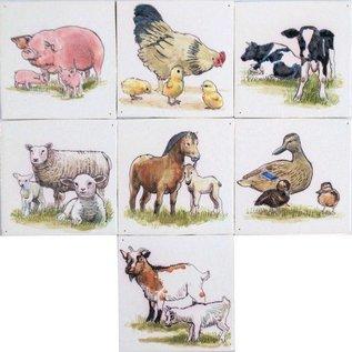Dieren - Tieren - animals RH1-45, Tiere