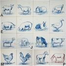 Dieren - Tieren - animals RH1-5, Tiere