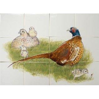 Dieren - Tieren - animals RH12-55 Pheasant