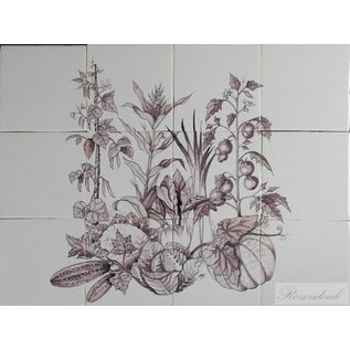 Bloemen - Blume - flowers RH12 Pflanzen