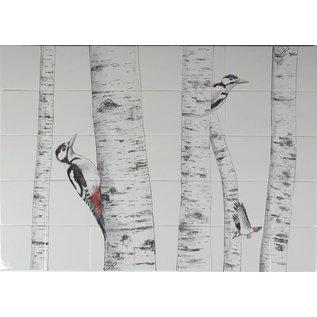 Dieren - Tieren - animals RH35-Woodpeckers