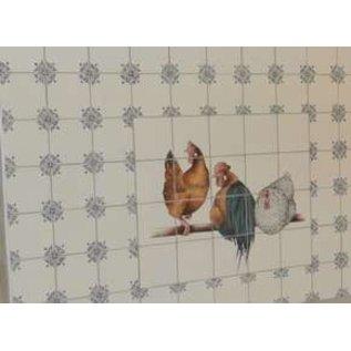 Voorbeelden - Fotogalerie - Photo Gallery Ox-head/chicken