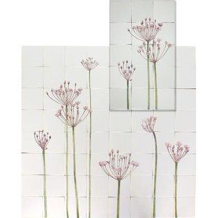 Bloemen - Blume - flowers RTH40-1 Flowering rush