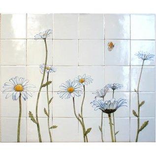 Bloemen - Blume - flowers RH30-1, Gänseblümchen