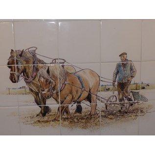 Voorbeelden - Fotogalerie - Photo Gallery Pferde-