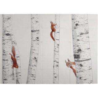 Dieren - Tieren - animals RH35-Squirrel