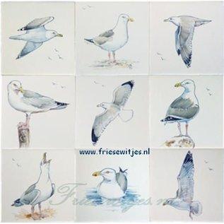 Dieren - Tieren - animals RH1-6Möwen
