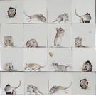 Dieren - Tieren - animals RH1-14k muizen
