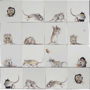 Dieren - Tieren - animals RH1-14k mice