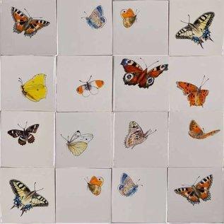 Dieren - Tieren - animals RH1-40k, Schmetterlinge