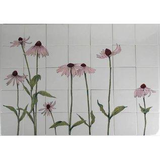 Bloemen - Blume - flowers RH30-3, coneflower