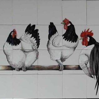 Dieren - Tieren - animals Lakenvelder chickens