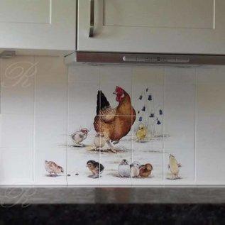 Voorbeelden - Fotogalerie - Photo Gallery Hen with chicks