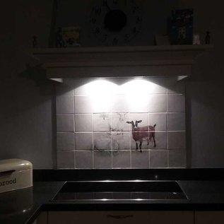 Voorbeelden - Fotogalerie - Photo Gallery Goats on command
