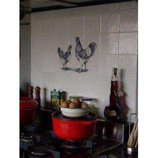 Dieren - Tieren - animals RH6-10k, Rooster and Chicken