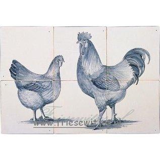Dieren - Tieren - animals RH6-10, Hahn und Huhn