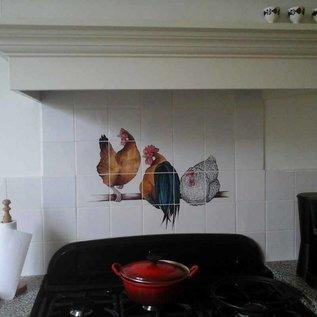 Voorbeelden - Fotogalerie - Photo Gallery Hühner beim Dunstabzugshaube
